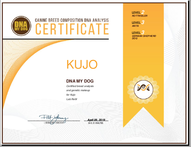 Easydna UK DNA My Dog Certificate