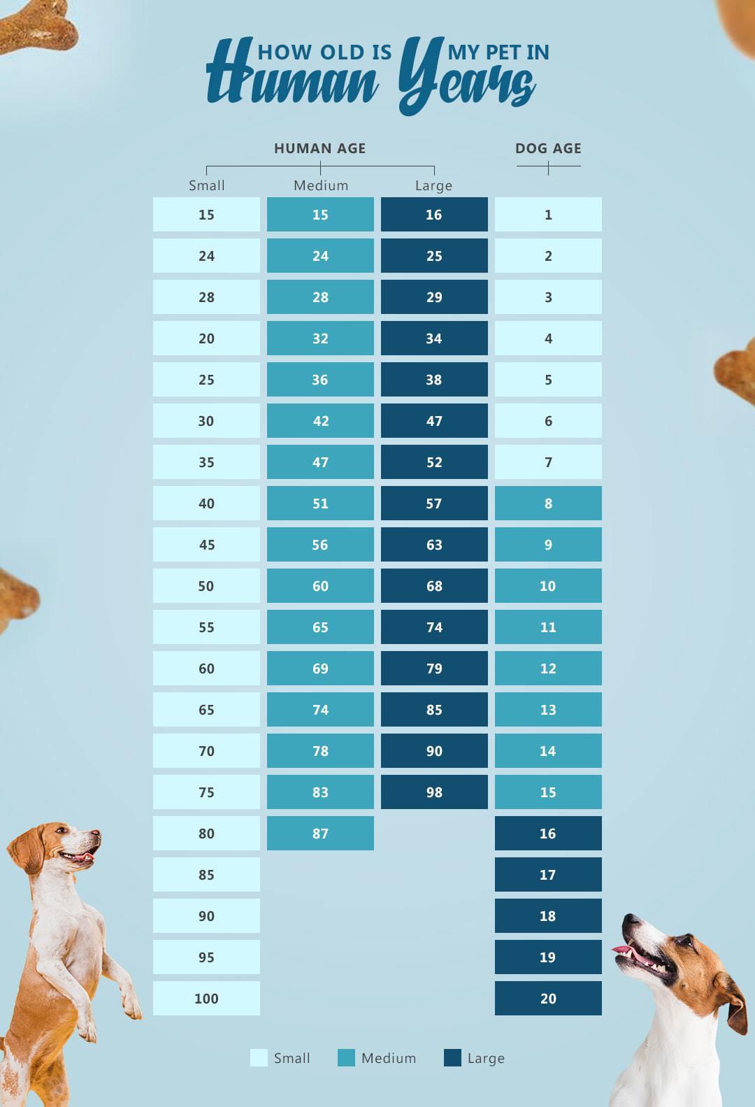 chart dog age